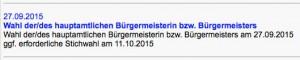 Bürgermeister-Wahl: Jetzt auch offiziell auf der Homepage!