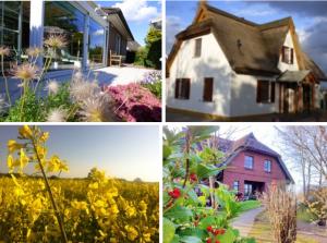 Immobilien: Kauf und Verkauf sind Vertrauenssache