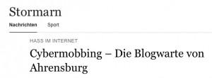 aus: Stormarn online vom Hamburger Abendblatt