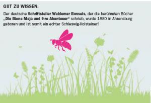 In Ahrensburg gibt es tatsächlich einen Waldemar-Bonsels-Weg!